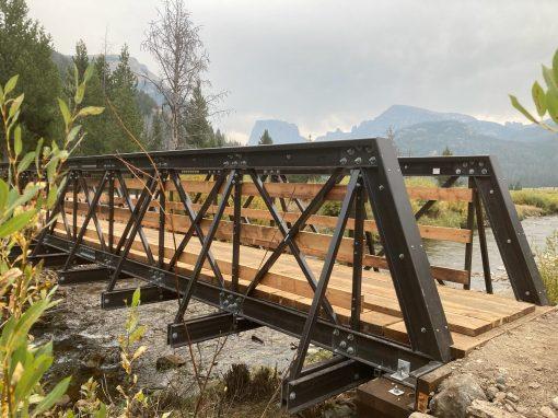 3 Pedestrian Bridge Design Examples